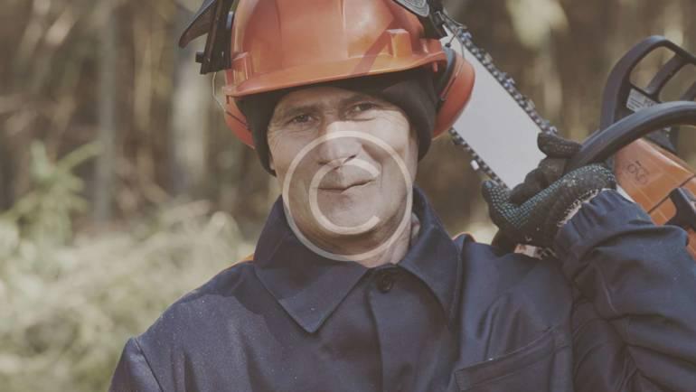 Logging crews