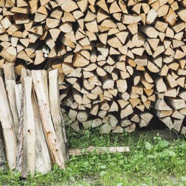 Printemps : la bonne saison pour préparer son bois
